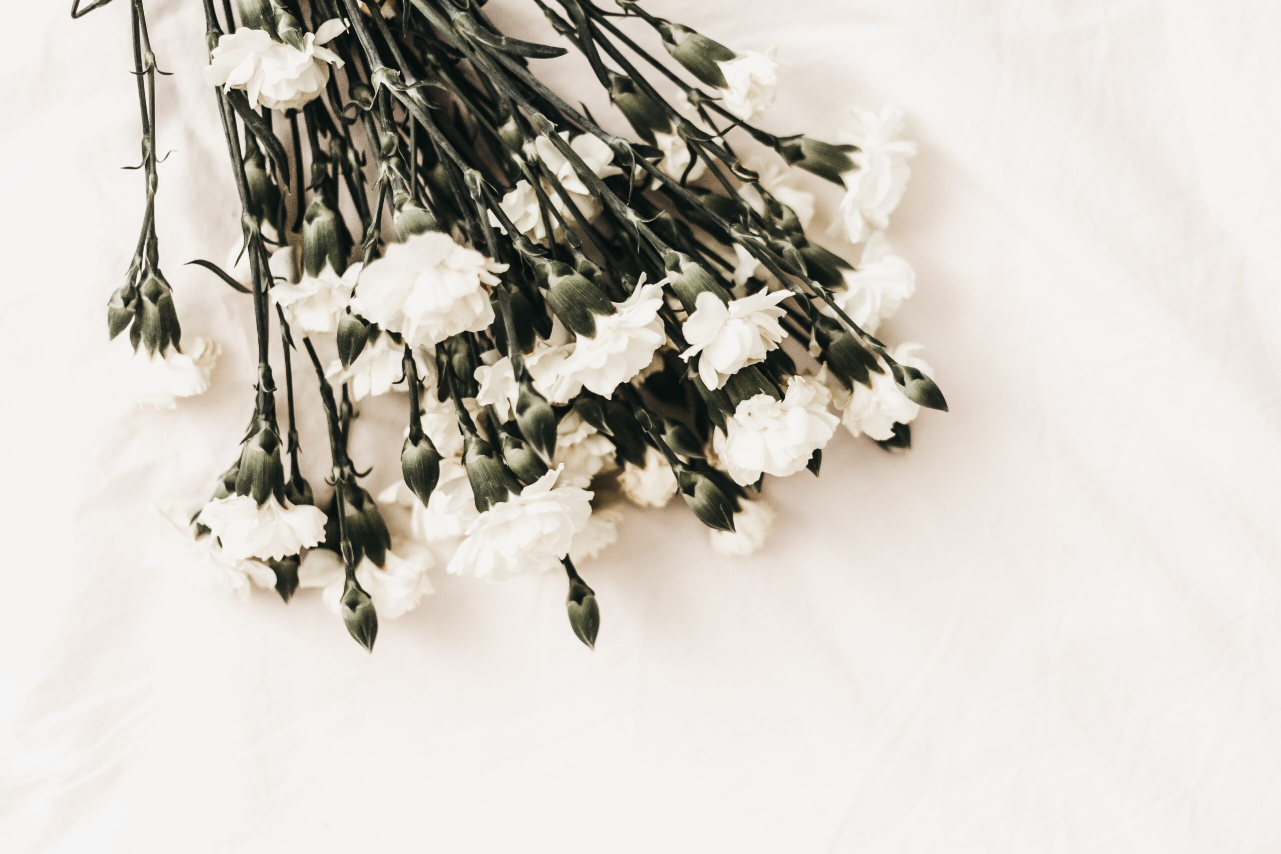 St. Louis funeral and cremation pricing