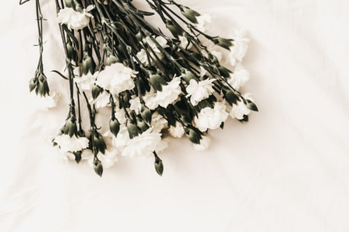 Affordable cremation services in St. Louis